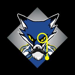 Senior Foxes